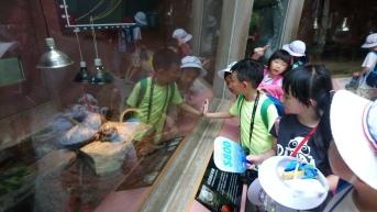 爬蟲類展示區