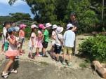 環境教育課程